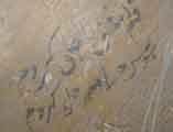 Арабские надписи на стенах в мавзолее Рухабад